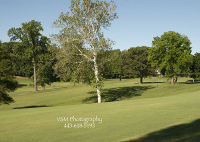 golf0028