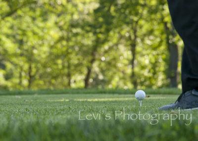 golf8256